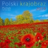 Kalendarz Polski krajobraz WZ 2019