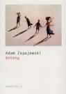 Anteny Zagajewski Adam