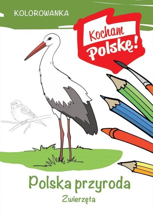 Kolorowanka Polska przyroda zwierzęta Kiełbasiński Krzysztof