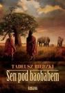 Sen pod baobabem
