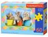 Puzzle Siberian Kittens in  Flowerpots 60 elementów (06762)