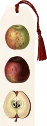 Zakładka 05 ze wstążką Jabłka