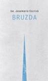 Bruzda
