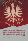 Drogi do niepodległości Ziemia wschowska i pogranicze wielkopolsko-śląskie 1918-1920