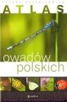 Atlas owadów polskich  Przybyłowicz Łukasz