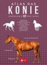 Konie Atlas ras