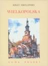 Wielkopolska Cuda Polski
