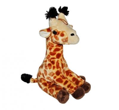 Żyraf