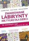 Zwariowane labirynty nie tylko dla dzieci 50 ścieralnych kart w formacie Szłapa Katarzyna, Tomasik Iwona, Wrzesiński Sławomir