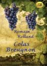Colas Breugnon  (Audiobook) Romain Rolland