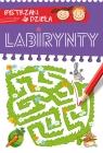 Bystrzaki do dzieła Labirynty