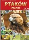Ilustrowana encyklopedia ptaków Polski<br />Atlas
