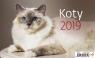 Kalendarz biurkowy Koty 2019