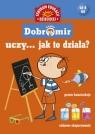 Pomysłowy Dobromir uczy... Jak to działa?