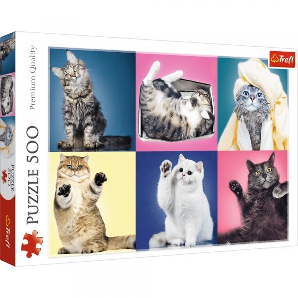Puzzle 500: Kociaki (37377) (Zgnieciony kartonik)