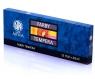 Farby tempera Astra Artea 12 kolorów - 20 ml