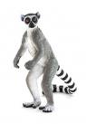 Lemur katta ANIMAL PLANET