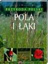 Pola i łąki - Przyroda Polski