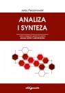 Analiza i synteza Perzanowski Jerzy