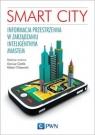 Smart City. Informacja przestrzenna w zarządzaniu inteligentnym miastem