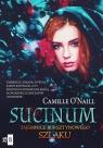 Sucinum. Tajemnice Bursztynowego szlaku