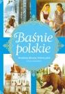 Baśnie polskie Miedziany olbrzym, Srebrny jeleń i inne opowieści