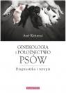 Ginekologia i położnictwo dla psów