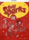 Gold Sparks, język angielski. Ćwiczenia, klasa 3