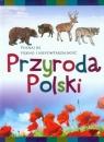 Przyroda Polski. Poznaj jej piękno i niepowtarzalność