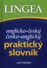 Praktyczny słownik angielsko-czeski i czesko-angielski