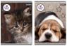 Zeszyt A5 w kratkę 80 kartek The Sweet Pets mix