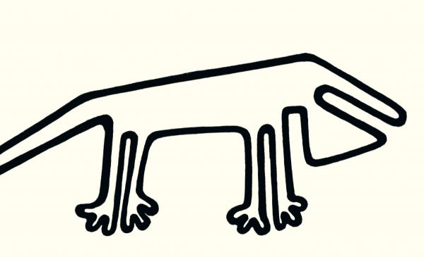 Praptaki i inne zwierzaki. Czerwińska Joanna Merkuria