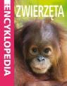 Mini Encyklopedia - Zwierzęta praca zbiorowa