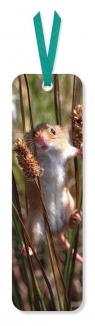 Zakładka do książki Harvest Mouse