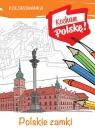 Kolorowanka Polskie zamki