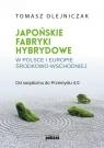 Japońskie fabryki hybrydowe w Polsce i w Europie Środkowo-Wschodniej (Uszkodzona okładka)