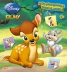 Disney Filmy Kolorowanka naklejanka NS3