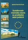 Kształtowanie wizerunku miasta na przykładzie miast polskich