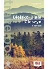 Bielsko-Biała Cieszyn i okolice Travelbook Baturo Iwona
