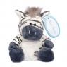 Niebieski nosek - zebra Chip