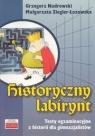Historyczny labirynt Nadrowski Grzegorz, Ziegler-Łozowska Małgorzata