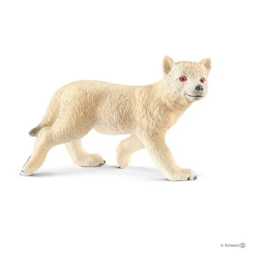 Młody wilk arktyczny - 14804
