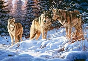 Puzzle 500 Wolves (51793) .