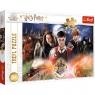 Puzzle 300: Tajemniczy Harry Potter (23001)