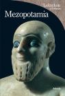 Leksykon cywilizacje Mezopotamia