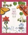 Świat motyli
