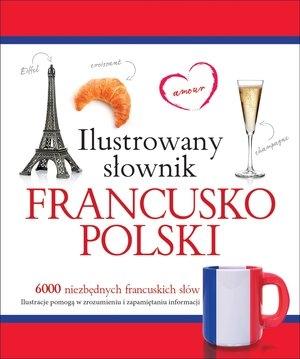 Ilustrowany słownik francusko-polski - Tadeusz Woźniak - książka