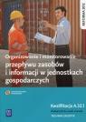Organizowanie i monitorowanie przepływu zasobów i informacji w jednostkach gospodarczych. Kwalifikacja A.32.1. Podręcznik do nauki zawodu technik logistyk. Szkoły ponadgimnazjalne