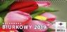 Kalendarz 2019 KBP Biurk.poprzecz tulipany