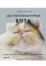Jak fotografować kota Joanna Zaleska